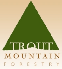 Trout Mountain