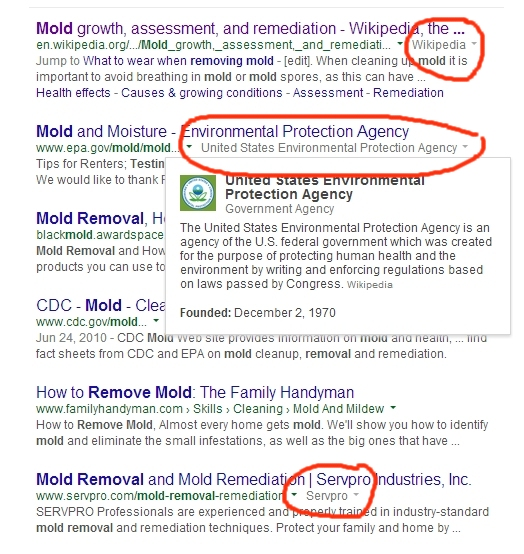 New company info pulldowns in Google SERPs